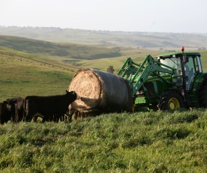 Farming near Casterton. Photo Richard Murphy