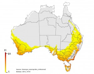NRM regions and a climatic suitability (EI) projection for bridal creeper in current climates using CLIMEX modelling