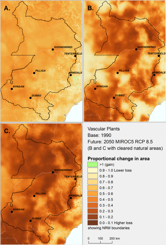 The change in effective area of similar ecological environments for vascular plants by 2050 in north-eastern New South Wales and south-eastern Queensland under the high emissions' mild MIROC5 climate scenario. Darker colours signify areas greater loss of effective area. A) loss of effective area due to climate change, B) effective area already lost to date due to past land clearing, C) the combined effects of past land clearing and climate change.