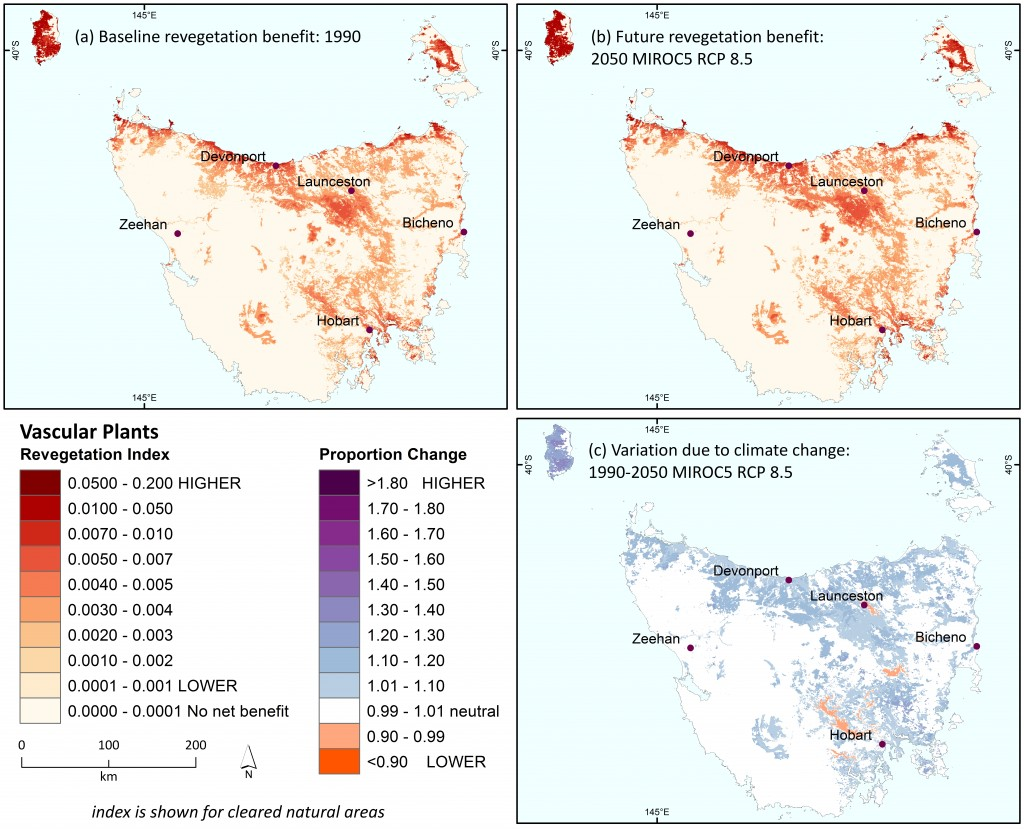 Revegetation benefit for present-day ecological environments for vascular plants in Tasmania (a) under the baseline (1990) climate, (b) for 2050 under the high emissions' mild MIROC climate scenario, and (c) showing proportional change in accrued benefit under the future climate (calculated as b/a).